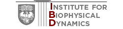 Institute for Biophysical Dynamics